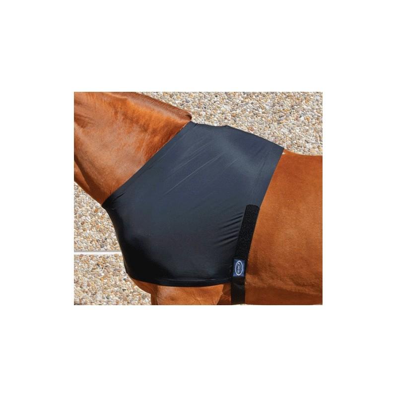 Protège poitrail nylon